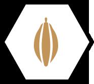 chocolatier_suisse